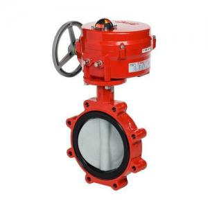 Resilient Seat Lug Type Butterfly Valve